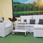 Фото-Pegas White плетеная мебель из искусственного ротанга Sinlindesign